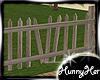 Old Beach Fence
