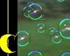 Bubble Photoshoot
