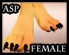 ASP) Furry Paws Female