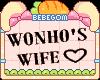 B | Wonho's Wife