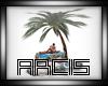 New  Beach Rocks Kiss