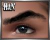 "[H]WILD "" Eyebrows"