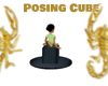 Posing Cube