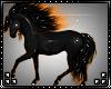 M: Horse Fire