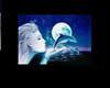 Dolphin Fantasy Room