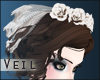 +Antique Doll+ Veil