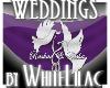 WL~ MZSWAGGA Banner
