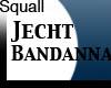 Squall jechtBandanna