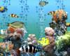 Wall Aquarium Animated