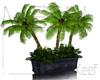 Stone Planter, Palm R