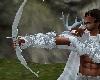 Sardar Hunting Bow