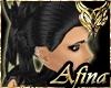 Apaca - Ebony Dev