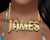 69-James Custom Chain