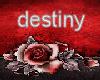 destinydolly