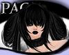 *PAC* Midnight Camilla