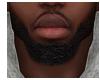 Over Grown Goatee Beard