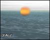 D- Sunrise Sunset