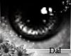 `Ⓓ`Doll Eyes 1