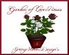 Garden of Love Rose Bush