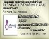 lina insurance card