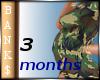 3M Pregnancy Scaler
