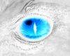 dragon eyes V3.