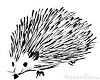 pikes Hedgehog