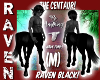 M RAVEN BLACK CENTAUR!