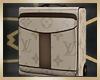 LV Suitcase+Pose