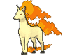 Animated Rapidash