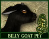 Billy Goat Black