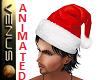 ~V~ Santas Hat Ani