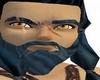 Celticwarriors beard