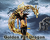 Golden Pet Dragon