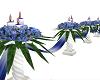 Blue Wedding Aisle Rope