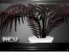[Rev] Plant