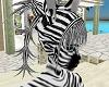 Crazy Zebra Hair