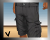 [ves] long khakis gray