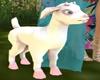 K! White Baby Goat