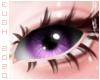 E - Lavender