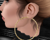 Gold Earrings/ Hoop [A]