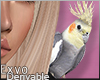 Parrot Sdr. F :ᚠ: Drv!