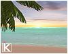  K 🌴 Tropical Beach