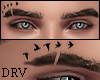 Eyebrows Birds [DRV]