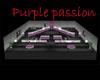 [Q]Purple Passion