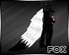[FOX] White Black Tail