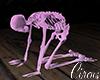 C` Pink Skellington Se