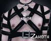 Black Leather Harness
