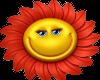 Sweet happy flower