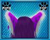 Crocus Leopard Ears V2